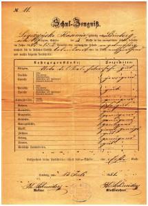 świadectwo klasa V 1881 r szkoły ewangelicznej Lwów